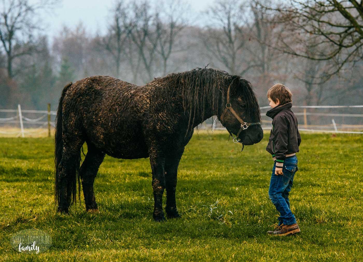 Familienfotos mit Pferd | Heidfelder Hof, Hungen