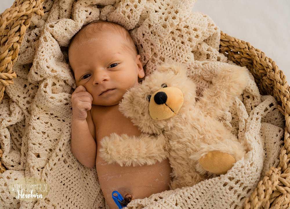 Babyfoto Henry Wibke Sommer