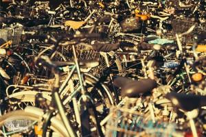 Fahrräder am Hbf München